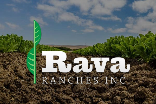 Rava Ranches Inc